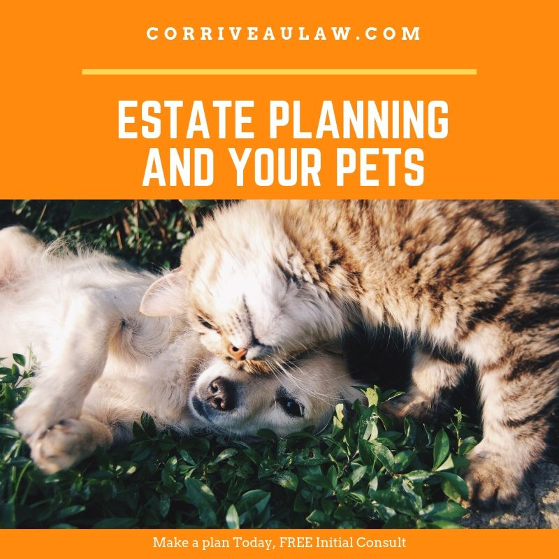 Quick Estate Planning Check List for Your Pets